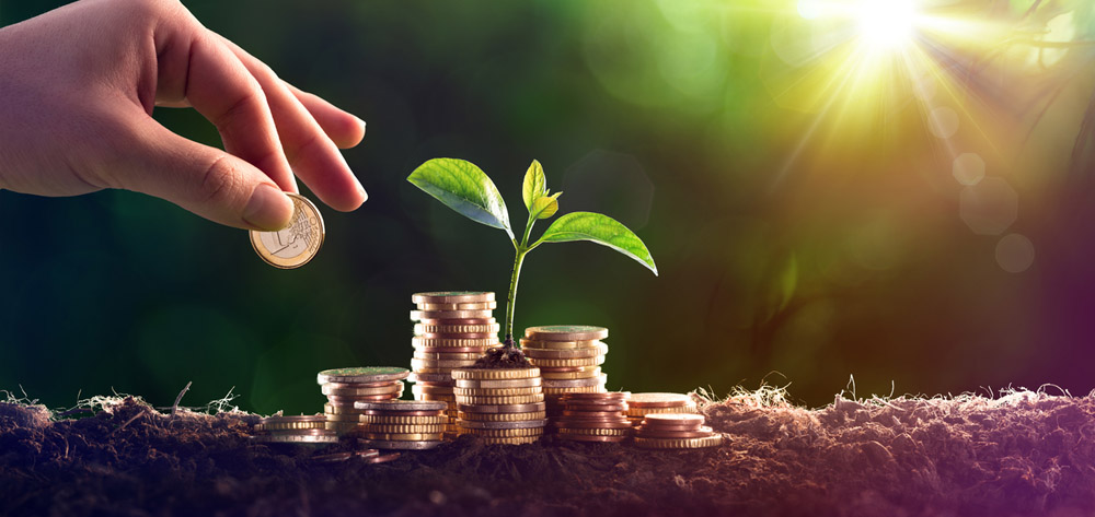 Choosing investment options in your super